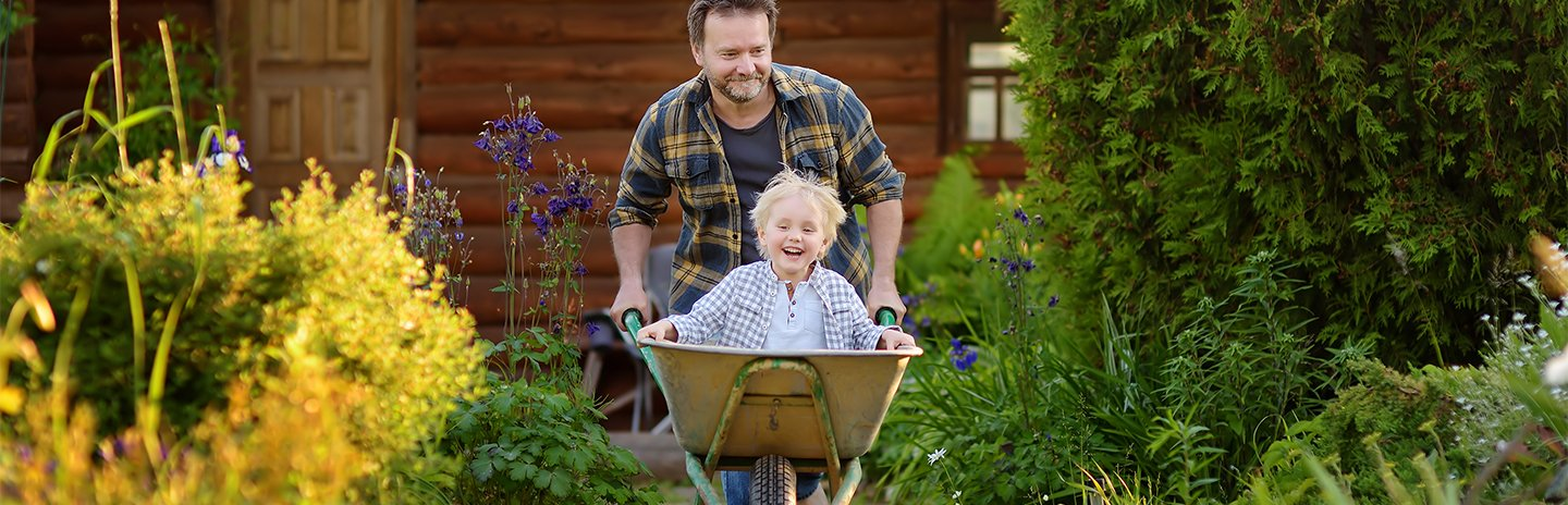 Happy little boy having fun in a wheelbarrow pushing by dad in domestic garden on warm sunny day.